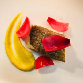 Filetto di branzino, cipolle marinate, purè alla curcuma